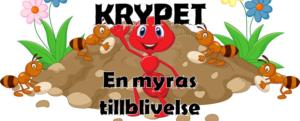 Krypet